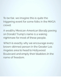 Head, Memes, and American: To be fair, we imagine this is quite the  triggering event for some folks in the MAGA  crowd  A wealthy Mexican-American literally peeing  on Donald Trump's name is a waking  nightmare for most of these people.  Which is exactly why we encourage every  brown-skinned person in the Greater Los  Angeles area to head to Hollywood  Boulevard and empty their bladders in the  name of freedom.