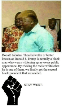 Black, Trump, and Racist: to blac  Donald Jabulani Thembalwethu or better  known as Donald J. Trump is actually a black  man who wears whitening spray every public  appearance. By tricking the racist whites that  he is one of them, we finally got the second  black president that we needed.  STAY WOKE
