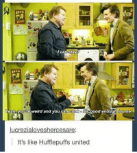 Memes, Weird, and Yeah: TO  /can stav  Yeah youre weird and you can cook o its good enough for me.  lucrezialoveshercesare:  It's like Hufflepuffs united