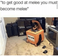 "Good, Melee, and You: ""to get good at melee you must  become melee'"""