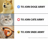 :O: TO JOIN DOGE ARMY  O TO JOIN CATE ARMY  TO JOIN SNEK ARMY  https://www.facebook.com/ShamelessFunBucket :O