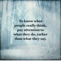 Memes, 🤖, and Think: To know what  people really think  pay attention to  what they do, rather  than what they say. To know what people really think, pay attention to what they do, rather that what they say. positiveenergyplus