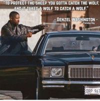 """Message: TO PROTECT THE SHEEP YOU GOTTA CATCH THE WOLF  AND IT TAKES A WOLF TO CATCH A WOLF""""  DENZEL WASHINGTON  Training Day  ORP 967 Message"""