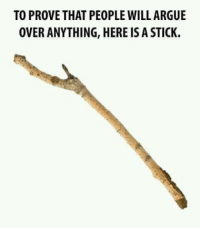 Arguing, Memes, and 🤖: TO PROVE THAT PEOPLE WILL ARGUE  OVER ANYTHING, HERE IS A STICK.
