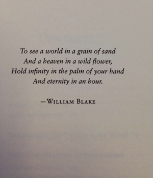 blake: To see a world in a grain of sand  And a heaven in a wild flower,  Hold infinity in the palm of your hand  And eternity in an hour.  -WILLIAM BLAKE