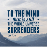 "Mind, QuotesPorn, and Universe: TO THE MIND  . that is still .  THE WHOLE UNIVERSE  SURRENDERS  Lao Tzu ""To the mind that is still, the whole universe surrenders."" - Lao Tzu [800x800]"