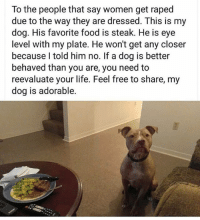 Food, Life, and Memes: To the people that say women get raped  due to the way they are dressed. This is my  dog. His favorite food is steak. He is eye  level with my plate. He won't get any closer  because l told him no. If a dog is better  behaved than you are, you need to  reevaluate your life. Feel free to share, my  dog is adorable. Well he has a point 🤔 @x__antisocial_butterfly__x @lola_the_ladypug @antisocialtv ❤️