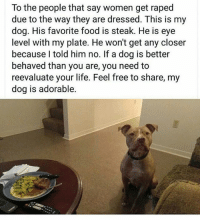 @lackofchillz I love this!! ❤❤❤ mmsip noharmdone teamnoharmdone: To the people that say women get raped  due to the way they are dressed. This is my  dog. His favorite food is steak. He is eye  level with my plate. He won't get any closer  because I told him no. If a dog is better  behaved than you are, you need to  reevaluate your life. Feel free to share, my  dog is adorable. @lackofchillz I love this!! ❤❤❤ mmsip noharmdone teamnoharmdone
