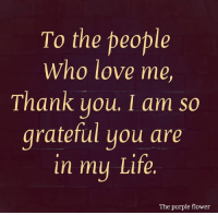 Life, Love, and Memes: To the people  Who love me,  Thank you, I am so  grateful you are  in mu Life.  The purple flower <3