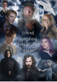 Memes, 🤖, and Adventure: To the well  organized mind  death is but thenext  great adventur Raise your wands for those who we lost 9YearsDeathlyHallows