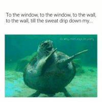 25 Best To The Window To The Wall Memes To The Window Memes