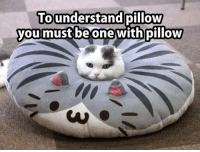 Understandment: To understand  pillow  you must be one with pillow