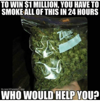 Memes, Help, and 🤖: TO WIN S1 MILLION, YOU HAVE TO  SMOKE ALL OF THIS IN 24 HOURS  b.com/4TwentyToday  WHO WOULD HELP YOU?