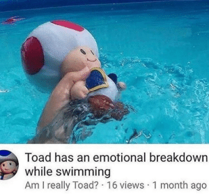 Swimming, Irl, and Me IRL: Toad has an emotional breakdown  while swimming  Am I really Toad? 16 views 1 month ago Me irl