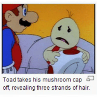 Memes, Hair, and 🤖: Toad takes his mushroom cap  off, revealing three strands of hair. no...:..I don't... support @idiosyncrat