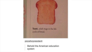 Hmmm......yes: Toast, adult stage in the life  cycle of bread.  pizzaforpresident:  Behold the American education  system Hmmm......yes