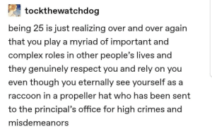 Propellor hat: tockthewatchdog  being 25 is just realizing over and over again  that you play a myriad of important and  complex roles in other people's lives and  they genuinely respect you and rely on you  even though you eternally see yourself as a  raccoon in a propeller hat who has been sent  to the principal's office for high crimes and  misdemeanors Propellor hat