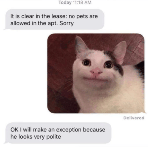 Lmao, Sorry, and Target: Today 11:18 AM  It is clear in the lease: no pets are  allowed in the apt. Sorry  Delivered  OK I will make an exception because  he looks very polite justcatposts:Lmao 😂