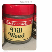 Nominee for most severe Dad Joke of all time: Today 12:49 PM  McCormick  Dill  CWeed Nominee for most severe Dad Joke of all time