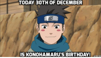 Memes, Happy Birthday, and Monkey: TODAY 30TH OF DECEMBER  IS KONOHAMARUS BIRTHDAY!  tADOTECT.COM Happy Birthday :D - Monkey D. Luffy
