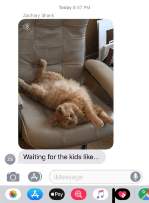 Dad, Kids, and Today: Today 8:47 PM  Zachary Shank  Waiting for the kids like...  ZS  iMessage  Pay  AD My dad just sent this