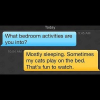 The only pussies welcome in my bedroom. (@grindr.fails) bestofgrindr: Today  9:45 AM  What bedroom activities are  you into?  10:04 AM  Mostly sleeping. Sometimes  my cats play on the bed  That's fun to watch. The only pussies welcome in my bedroom. (@grindr.fails) bestofgrindr