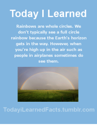 Facts, Tumblr, and Blog: Today I Learned  Rainbows are whole circles. We  don't typically see a full circle  rainbow because the Earth's horizon  gets in the way. However, when  you're high up in the air such as  people in airplanes sometimes do  see them.  TodaviLearned Facts.tumblr.com todayilearnedfacts: Follow TodayiLearnedFacts for more Daily Facts! Source