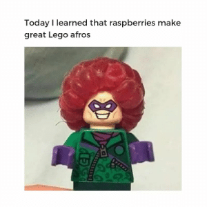 Lego, Reddit, and Today: Today I learned that raspberries make  great Lego afros A new super villain?
