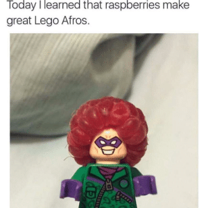 Lego, Today, and Afros: Today I learned that raspberries make  great Lego Afros Missed childhood