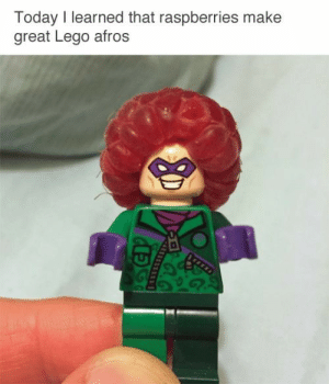 Time to make Disco Stu via /r/memes https://ift.tt/2YntUR6: Today I learned that raspberries make  great Lego afros Time to make Disco Stu via /r/memes https://ift.tt/2YntUR6