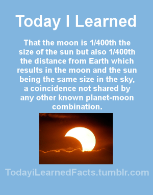 Facts, Tumblr, and Blog: Today I Learned  That the moon is 1/400th the  size of the sun but also 1/400th  the distance from Earth which  results in the moon and the sun  being the same size in the sky  a coincidence not shared by  any other known planet-moon  combination  TodaviLearned Facts.tumblr.com todayilearnedfacts: Source Follow @todayilearnedfacts​ for more daily Facts!