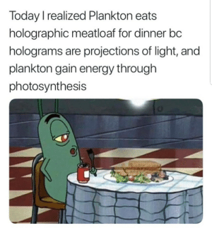 Energy, Meatloaf, and Photosynthesis: Today I realized Plankton eats  holographic meatloaf for dinner bc  holograms are projections of light, and  plankton gain energy through  photosynthesis Well..
