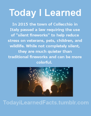 "videogamesandshipping: todayilearnedfacts:  (source) Follow TodayiLearnedFacts for more Daily Facts!   Why didn't my dumb town have these! , I hate loud noises and also my dogs freak out  : Today ILearned  In 2015 the town of Collecchio in  Italy passed a law requiring the use  of ""silent fireworks"" to help reduce  stress on veterans, pets, children, and  wildlife. While not completely silent,  they are much quieter than  traditional fireworks and can be more  colorful.  TodayiLearnedFacts.tumblr.com videogamesandshipping: todayilearnedfacts:  (source) Follow TodayiLearnedFacts for more Daily Facts!   Why didn't my dumb town have these! , I hate loud noises and also my dogs freak out"