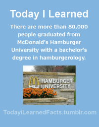 College, Facts, and McDonalds: Today ILearned  There are more than 80,000  people graduated from  McDonald's Hamburger  University with a bachelor's  degree in hamburgerology  HAMBURGER  L UNIVERSITY  TodayiLearnedFacts.tumblr.com todayilearnedfacts:  Follow TodayiLearnedFacts for more Daily Facts! Source