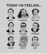 Meh, Nicolas Cage, and John Travolta: TODAY I'M FEELING  HAPPY  CAREFREE  RELAXED  EXCITED  FOCUSED  STRESSED  ANGRY  BEES!!!  MEH <h2>¿Qué Nicolas Cage eres hoy?</h2><p>Me falta John Travolta, pero bien.</p>