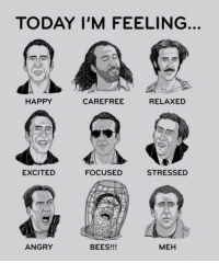 Meh, Happy, and Today: TODAY I'M FEELING  HAPPY  CAREFREE  RELAXED  EXCITED  FOCUSED  STRESSED  ANGRY  BEES!!!  MEH Pick your cage!