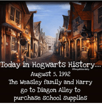Facts, Family, and Gryffindor: Today in Hogwarts History  August 5, 1992  The Weasley family and Harry  go to Diagon Alley to  purchaSe School SupplieS What Hogwarts school supply would you be most excited to buy? . . . . . . . __________________________________________________ __________________________________________________ Harrypotter potterhead wizardingworld wizardingworldofharrypotter gryffindor hufflepuff slytherin ravenclaw hogwarts hogwartsismyhome bookstagram hermione sharethemagic hermione bookworm ronweasley voldemort harrypotterfacts hpfacts snape dracomalfoy fangirl hp facts fandom emmawatson fantasticbeasts fbawtft
