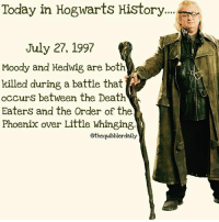 Facts, Gryffindor, and Hermione: Today in Hogwarts History  July 27, 1997  Moody and Hedwig are both  killed during a battle that  occurs between the Death  EaterS and the Order of the  Phoenix over Little Whinging  @thequibblerdaily Hedwigs death had me bawling 😭 the first time I read it. Which death in the series did you find the most sad? . Dobby for sure in my opinion to this day whenever I read or watch it I refuse to read-watch that again. I just skip right past it. . . . . __________________________________________________ __________________________________________________ harrypotter potterhead wizardingworld wizardingworldofharrypotter gryffindor hufflepuff slytherin ravenclaw hogwarts hogwartsismyhome bookstagram hermione sharethemagic hermione bookworm ronweasley voldemort harrypotterfacts hpfacts snape dracomalfoy fangirl hp facts fandom emmawatson fantasticbeasts fbawtft
