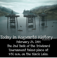 Gryffindor, Hermione, and Memes: Today in Hogwarts History...  othequibblerdaily  February 24, 1995  The 2nd Task of the Triwizard  Tournament takes place at  9:30 a.m, on the Black Lake. Do you prefer oceans or lakes? . . . . . . . . __________________________________________________ __________________________________________________ hogwartsishome harrypotter potter potterhead wizardingworld wizardingworldofharrypotter gryffindor hufflepuff slytherin ravenclaw hogwarts hogwartsismyhome hermione sharethemagic hermionegranger ronweasley lordvoldemort voldemort harrypotterfacts hpfacts snape dracomalfoy nevillelongbottom hp jkrowling fandom emmawatson fantasticbeasts fbawtft