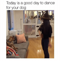 Memes, 🤖, and Definitions: Today is a good day to dance  for your dog  @barkbox You should definitely do this. 🔊 danceforyourdog literallythatsyou . @halleratyou