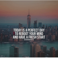 Memes, ReBoot, and 🤖: TODAY IS A PERFECT DAY  TO REBOOT YOUR MIND  AND HAVE A FRESH START  @24 HOUR SUCCESS Tag someone that would love this!! Successes - Follow : @24hoursuccess -