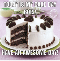 Cake: TODAY IS MY CAKE DAY  BOIS  HAVE AN AWESOME DAY!