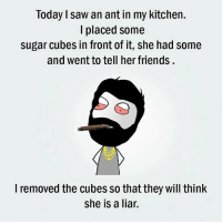 Memes, 🤖, and Cube: Today Isaw an ant in my kitchen.  I placed some  sugar cubes in front of it, she had some  and went to tell her friends  I removed the cubes so that they will think  she is a liar.
