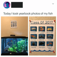 "School, Cool, and Fish: Today l took yearbook photos of my fish  Class Of 2017  Class of 2017  Rachel Cool guvlory  Ferdinand JFK, Lincoln  , Bertrude  & MLK  Tauas David Chad  Rachel Cool guy Joey & <p>Something tells me 'Cool Guy' was the 'Cool Guy' at this school. via /r/wholesomememes <a href=""http://ift.tt/2EDF5Nl"">http://ift.tt/2EDF5Nl</a></p>"