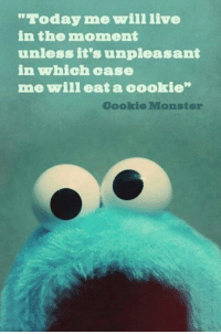 "Cookie Monster, Cookies, and Memes: ""Today mee will live  in the moment  unless it's unpleasant  in which case  me will eat a oookie  Cookie Monster"