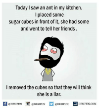 Memes, 🤖, and Cube: Today saw an ant in my kitchen.  I placed some  sugar cubes in front of it, she had some  and went to tell her friends.  I removed the cubes so that they will think  she is a liar.  @DESIFUN  DESIFUN COM  @DESIFUN  @DESIFUN Twitter: BLB247 Snapchat : BELIKEBRO.COM belikebro sarcasm Follow @be.like.bro
