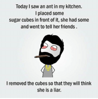 Friends, Memes, and Saw: Today saw an ant in my kitchen.  placed some  sugar cubes in front of it, she had some  and went to tell her friends  I removed the cubes so that they will think  she is a liar. belikebro
