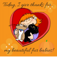 Today I give thanks for my beautiful fur babies <3: Today, T  for  give than  lovecatsworld.com  ng beautiful fur babies Today I give thanks for my beautiful fur babies <3