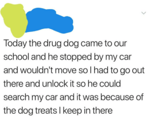 School, Tumblr, and Blog: Today the drug dog came to our  school and he stopped by my car  and wouldn't move so I had to go out  there and unlock it so he could  search my car and it was because of  the dog treats I keep in there awesomacious:  Wholesome Druggie Doggie