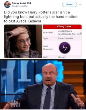 Dank, Memes, and Target: Today Years O  @todayyearsoldig  Follow  Did you know Harry Potter's scar isn't a  lightning bolt, but actually the hand motion  to cast Avada Kedavra  Killing Curse  Avada Kedavra  (a-VAH-dah ke-DAH-vra)l1  Curse, Dark Arts  Incantation  Type  Hand  Movement  Light  Green(21 we learn something new everyday. by Sokkenwaap MORE MEMES